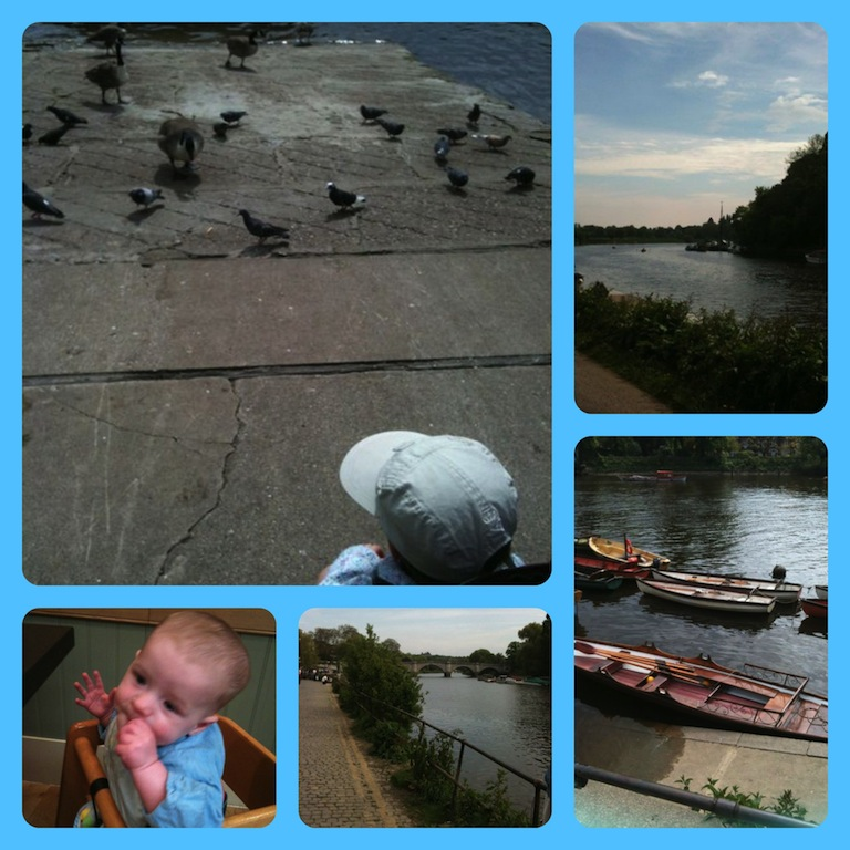 Walking by the Thames and feeding the geese/pigeons (and Joel eating lunch)