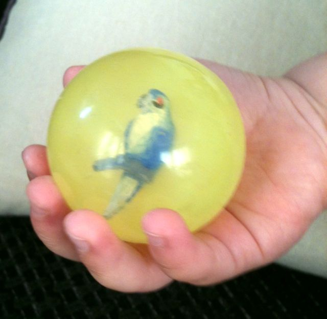 This is the parrot bouncy ball that he got as a souvenir at Birdland last weekend on our family day out. He is absolutely obsessed with it! Balls in general are his favourite thing at the moment, and this one in particular.